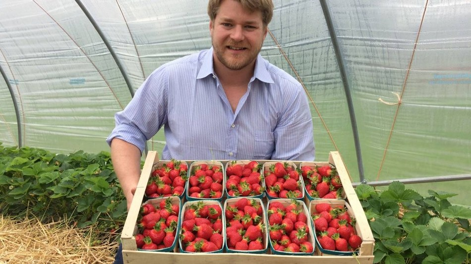 22. Les fraise du Val - Charles-Edouard Jolly